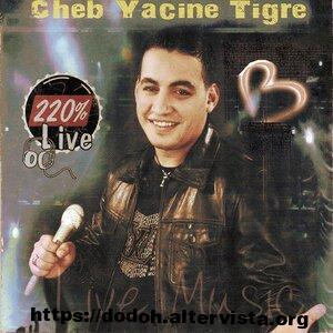 cheb yacine tigre 2020,cheb yacine tiger 2019
