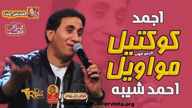 احمد شيبة 2019